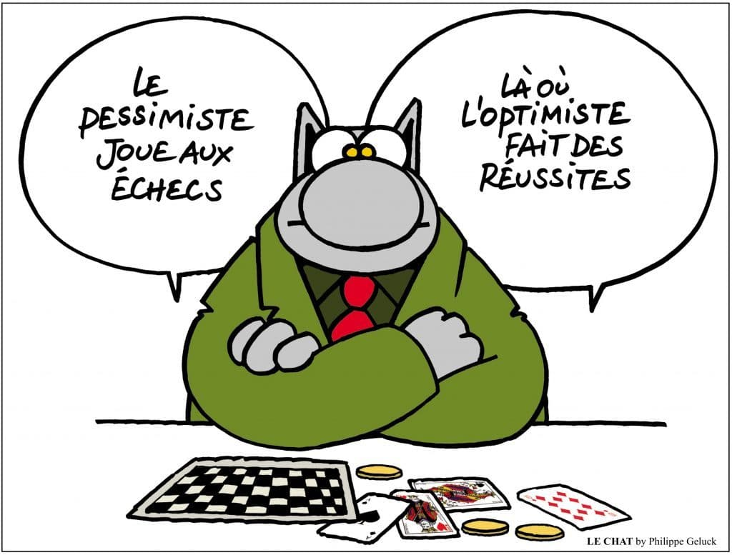 l'optimiste Le chat